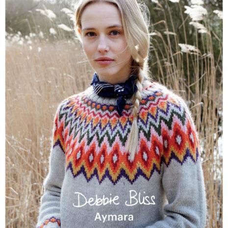 DB-Aymara-Booklet_Cover-2-810x1024